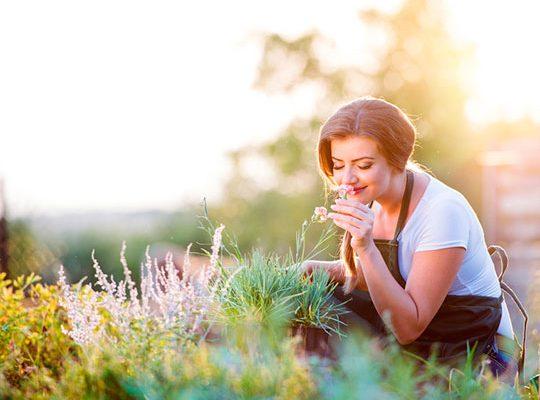 Düfte können eine wissenschaftlich bewiesene, entspannende Wirkung haben.