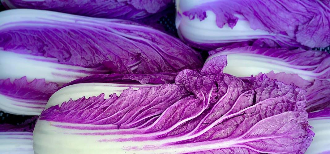 Nutze die Farbe Violett für dein Wohlbefinden.