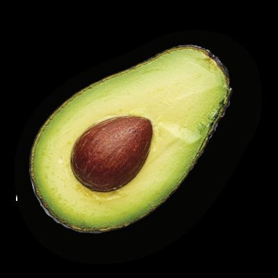 avocado-solo