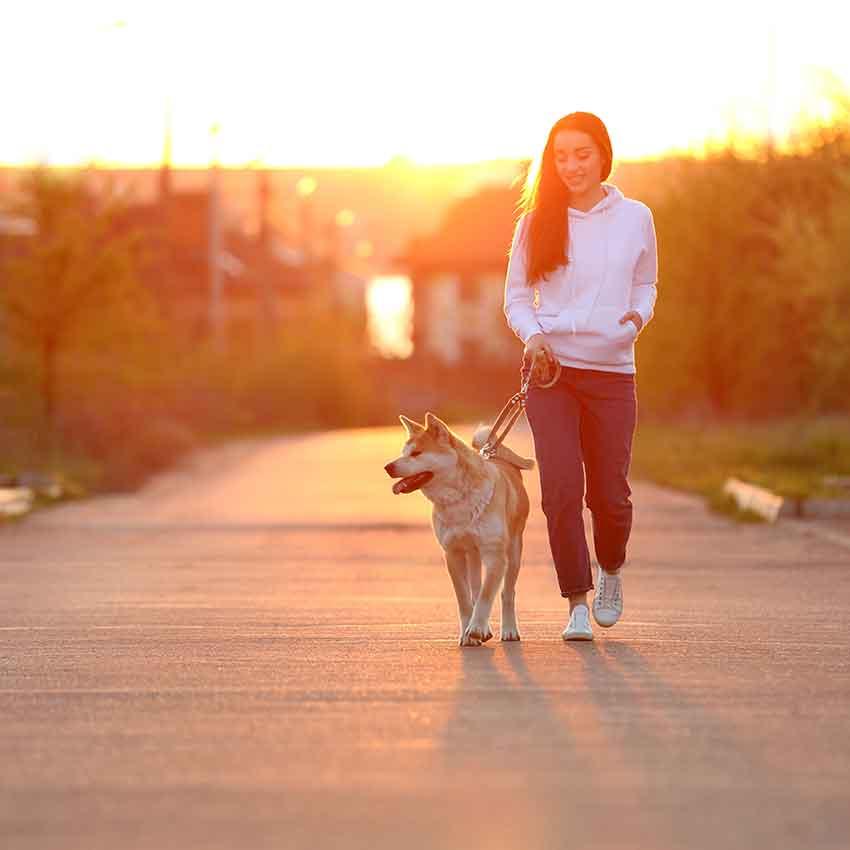 effektiv abnehmen, Spaziergang, gesund, Kalorien, spazieren, gehen